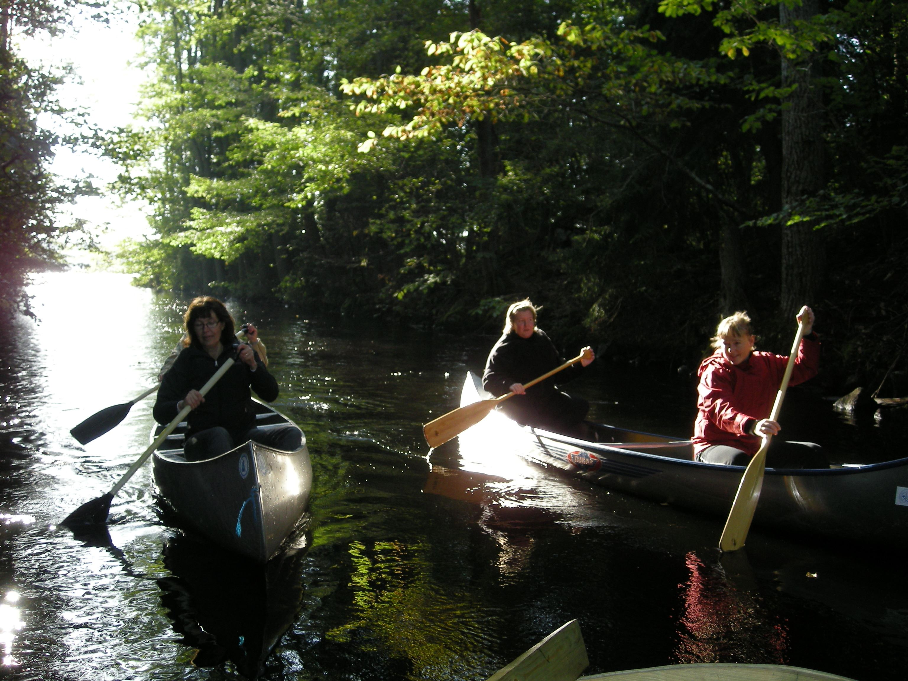 Canoeing in the river Emån and lakes in Högsby