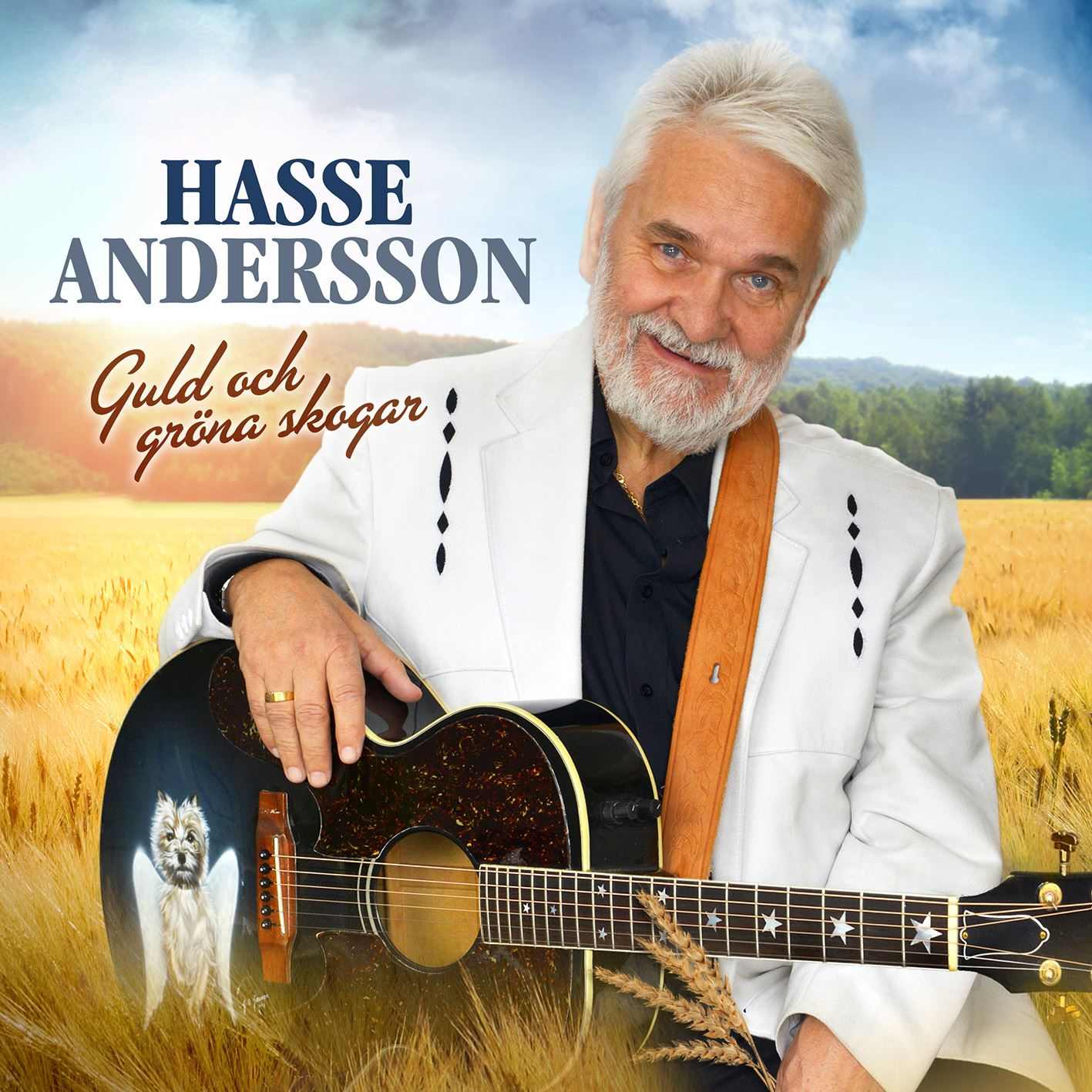 Concert - Hasse Andersson