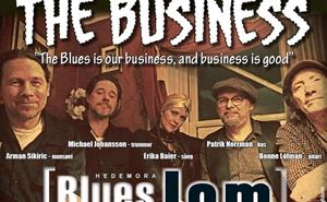 Hedemora Blues Jam - Erika Baier and The Business