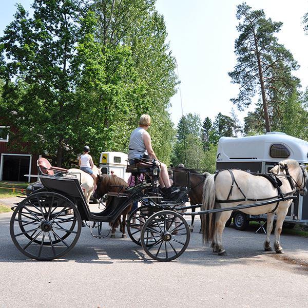 en materialsammanstllning av hllkistorna i Gteryd socken