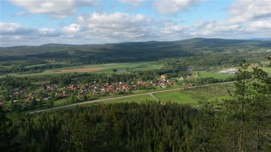 View of forest and village with houses.