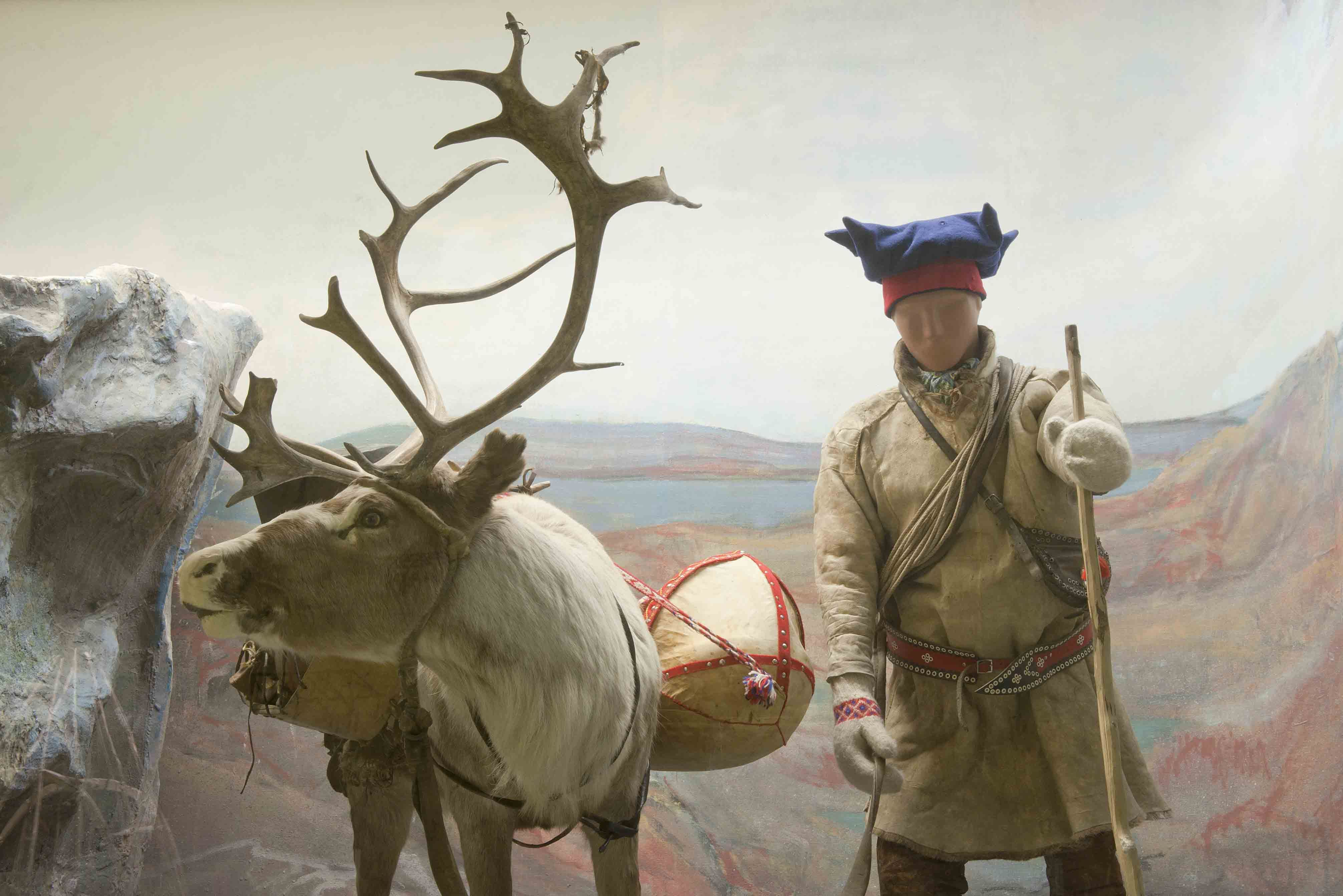 f4aad49e586bc Sami Culture and Camp Visit - Tromsø Arctic Reindeer Experience ...