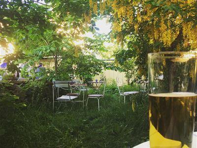 Trädgård de luxe