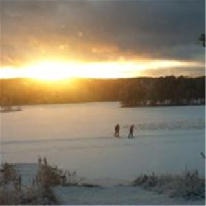 Cross-country skiers in sunset.