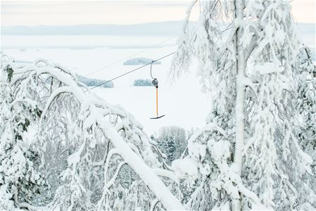 A ski lift between two snow laden trees.