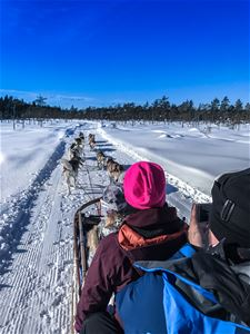 A family in a dog sled.