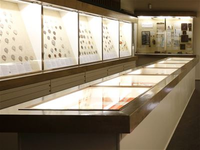 Exhibition at Småland Museum: Coin cabinet