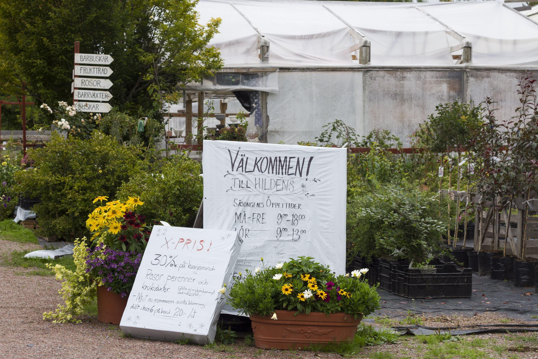 mora trädgård facebook