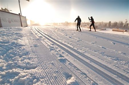 Cross-country skiers in sunny weather.