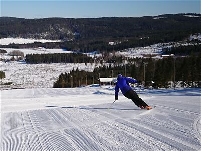 Skier in a slope, picture taken from the top.