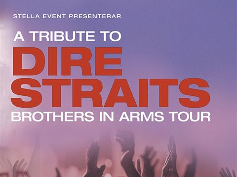 Concert - A Tribute to Dire Straits - The brothers in arms tour