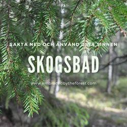Skogsbad - Längsterbodarna, Bergsjö