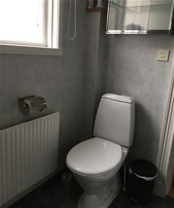 toilet seat with a toilet cabinet above.