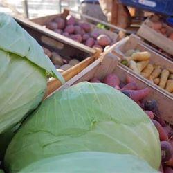 Höstmarknad i växthuset hos Forsa Handelsträdgård