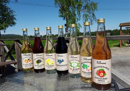 Bottles with fruitjuice line up in the sun.