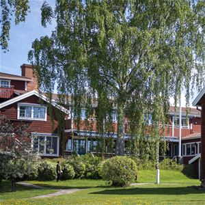 The hotel from the courtyard with green bushes and a large birch.