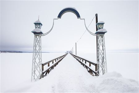 The bridge in winter