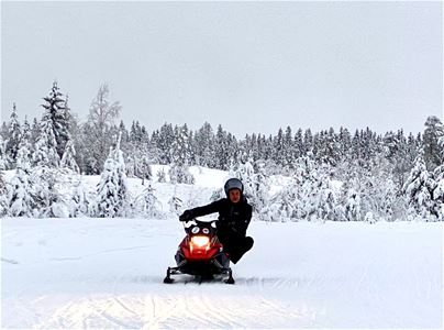 Mini snowmobile with driver in winter landscape