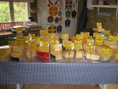 Cheeses on display on a table.