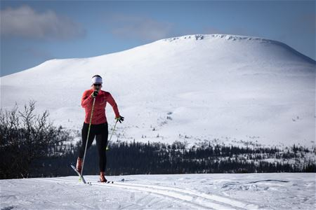 Cross-country skier with mountain Städjan in the background.