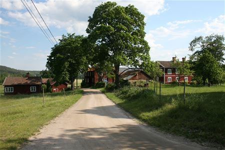 The road leading up to the village.
